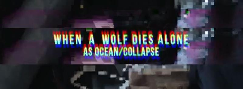 "AS OCEAN / COLLAPSE: il nuovo singolo ""When a Wolf Dies Alone"""