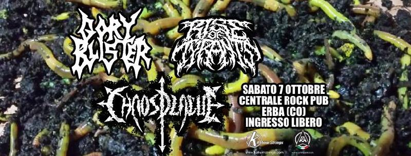 CHAOS PLAGUE: di supporto ai Gory Blister