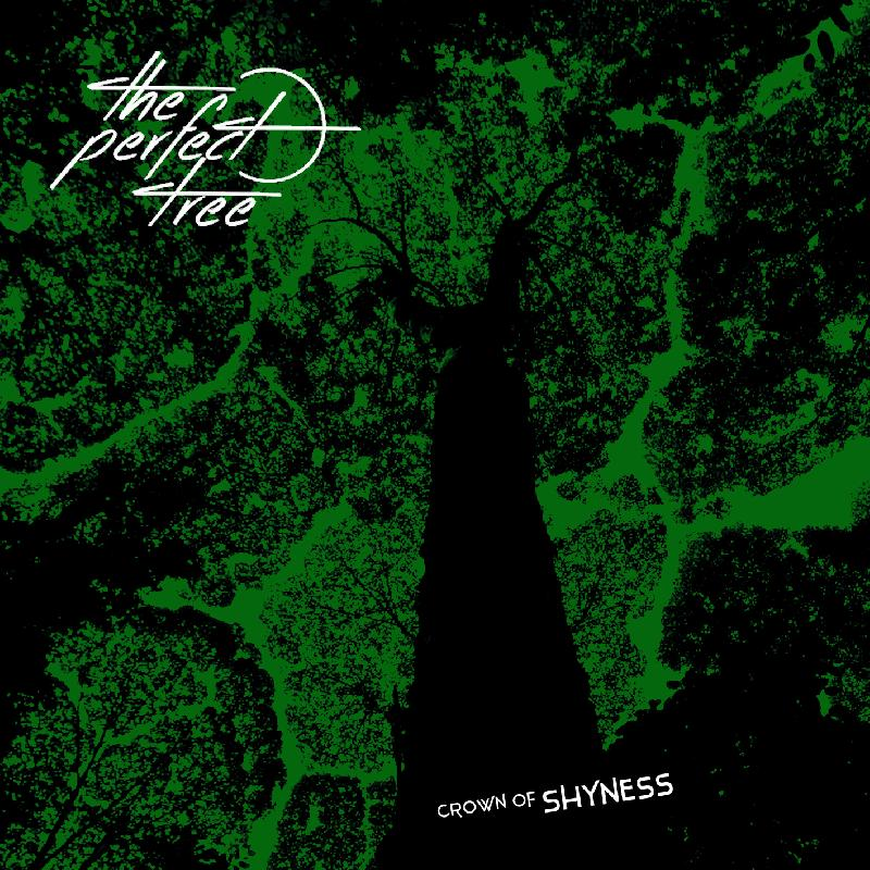 THE PERFECT TREE: release digitale dell'EP ''Crown Of Shyness''