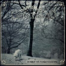 Winterage «Forest Of Consciousness» | MetalWave.it Recensioni